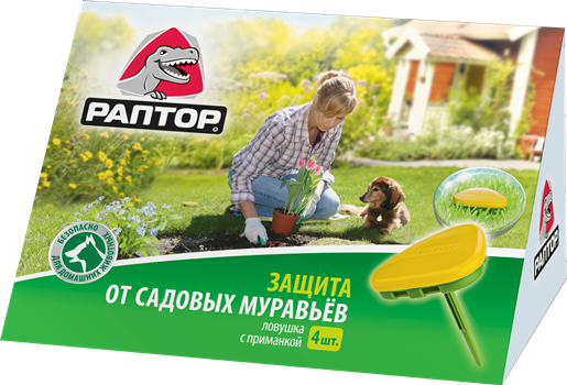 Защита от садовых муравьёв