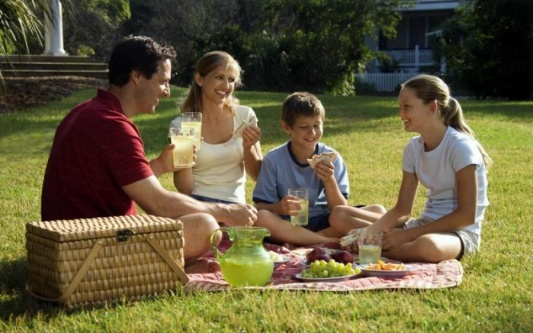 Лучшие инсектициды и репелленты от комаров