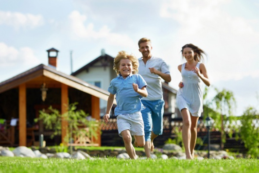 Способы защиты от насекомых в доме и на открытом воздухе, Раптор - защита от комаров